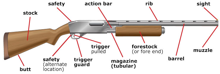 Parts of a Pump-Action Shotgun