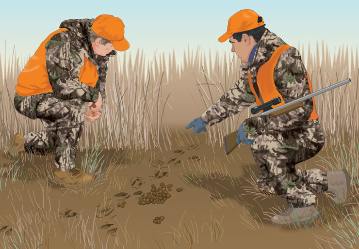Two hunters examining tracks