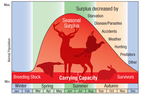 Carrying capacity chart
