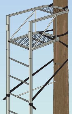 Ladder tree stand