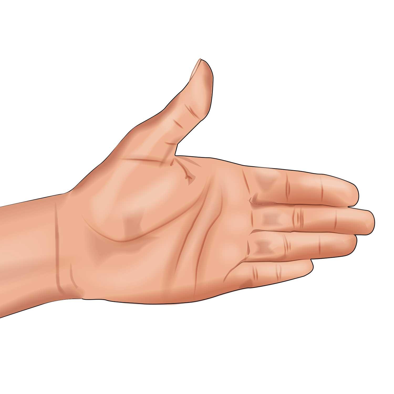 Hand Signal—Turn Left