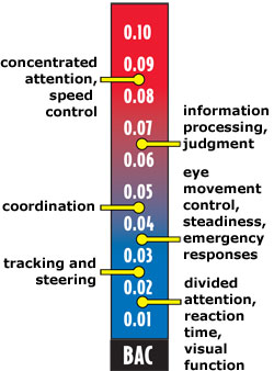 Areas of impairment due to blood alcohol concentration