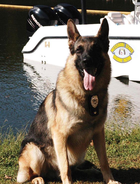 Missouri K9 Officer