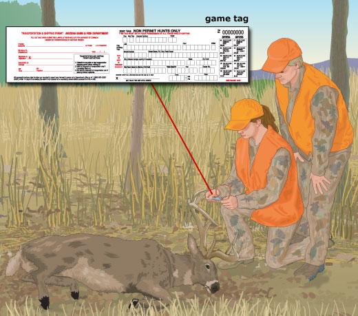 Arizona Game Tag