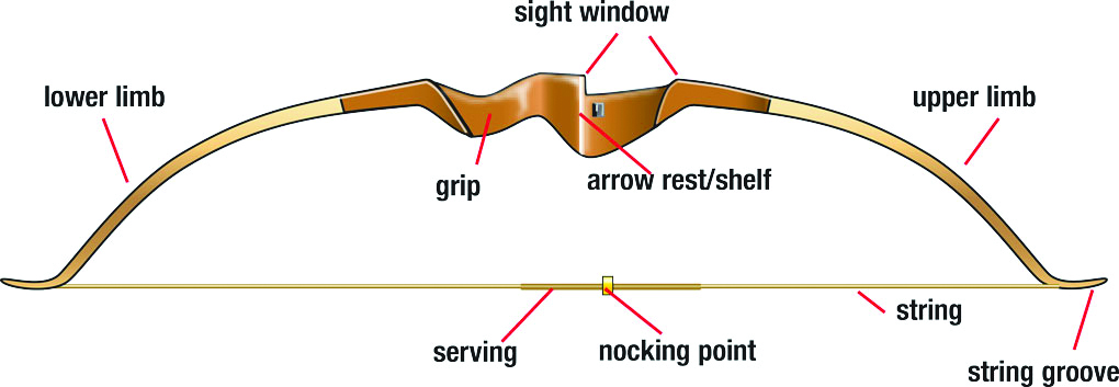 The Recurve Bow Michigan Bowhunting License Study Guide