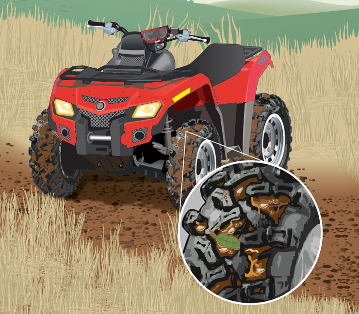 Noxious weed seeds lodged in tread of ATV tires
