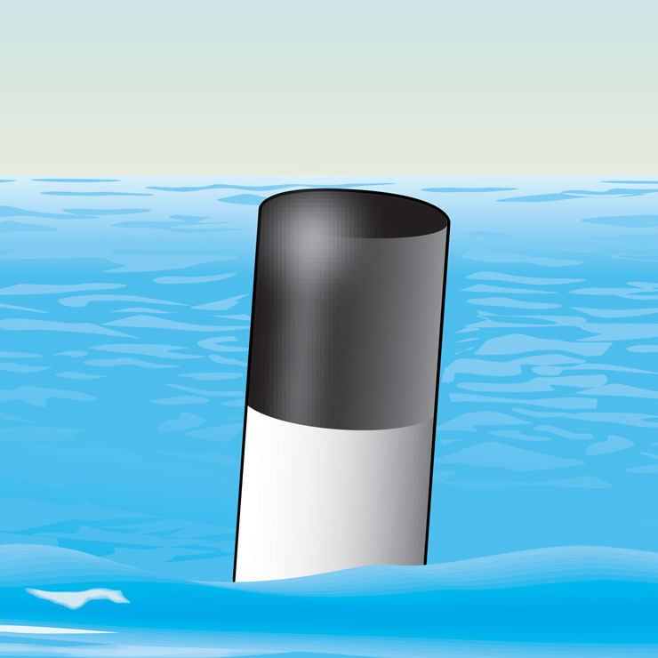 White With Black Top Buoy