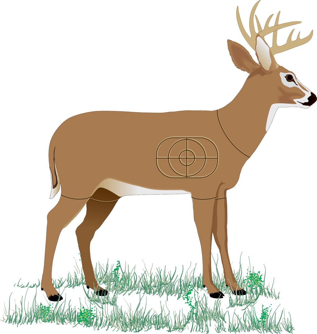 Deer decoy practice shooting