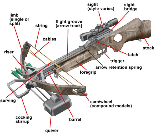 Compound crossbow
