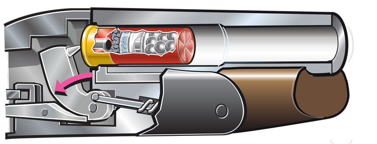 Cutaway: Shell inserted in chamber