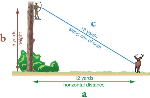 Judging distance from a tree stand: a = 12 yards horizontal distance to the target, b = 5 yards height in tree stand, c = 13 yards along line of shot