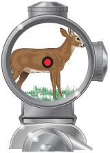 Telescopic sight with a dot reticle