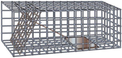 Box trap