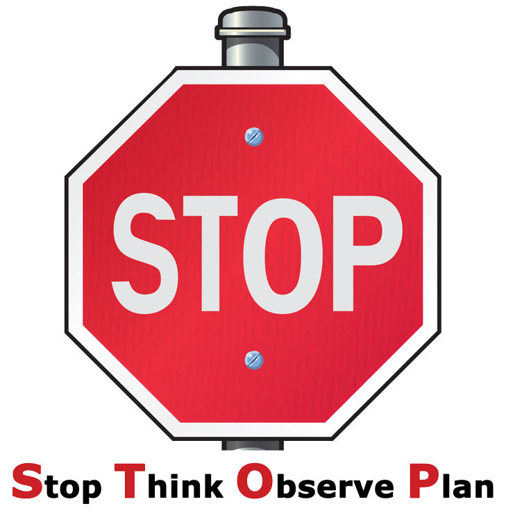 Stop, Think, Observe, Plan